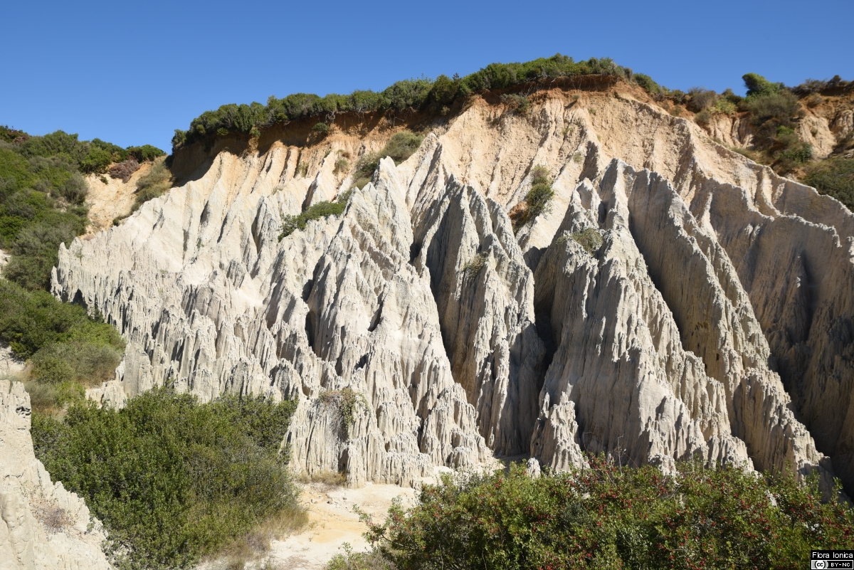 Formations of strongly eroded clay marl on Cape Gerakas in the SE of Zakynthos.