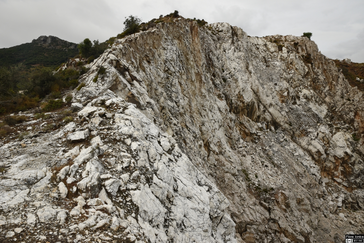 Abandoned limestone quarry on Mount Skopos (Zakynthos).
